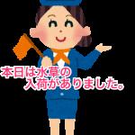 guide_tour