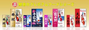 index_koi