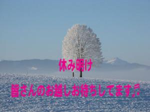winter-198447_960_720