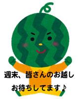 character_suika