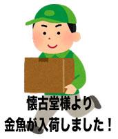 yuubin_takuhaiin_run_man